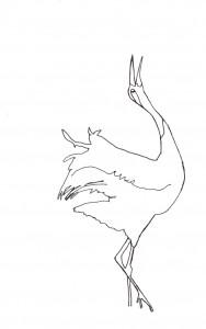 Skizze vn einem Kranich beim Hochzeitstanz